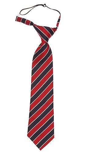 Corbatas de colegio